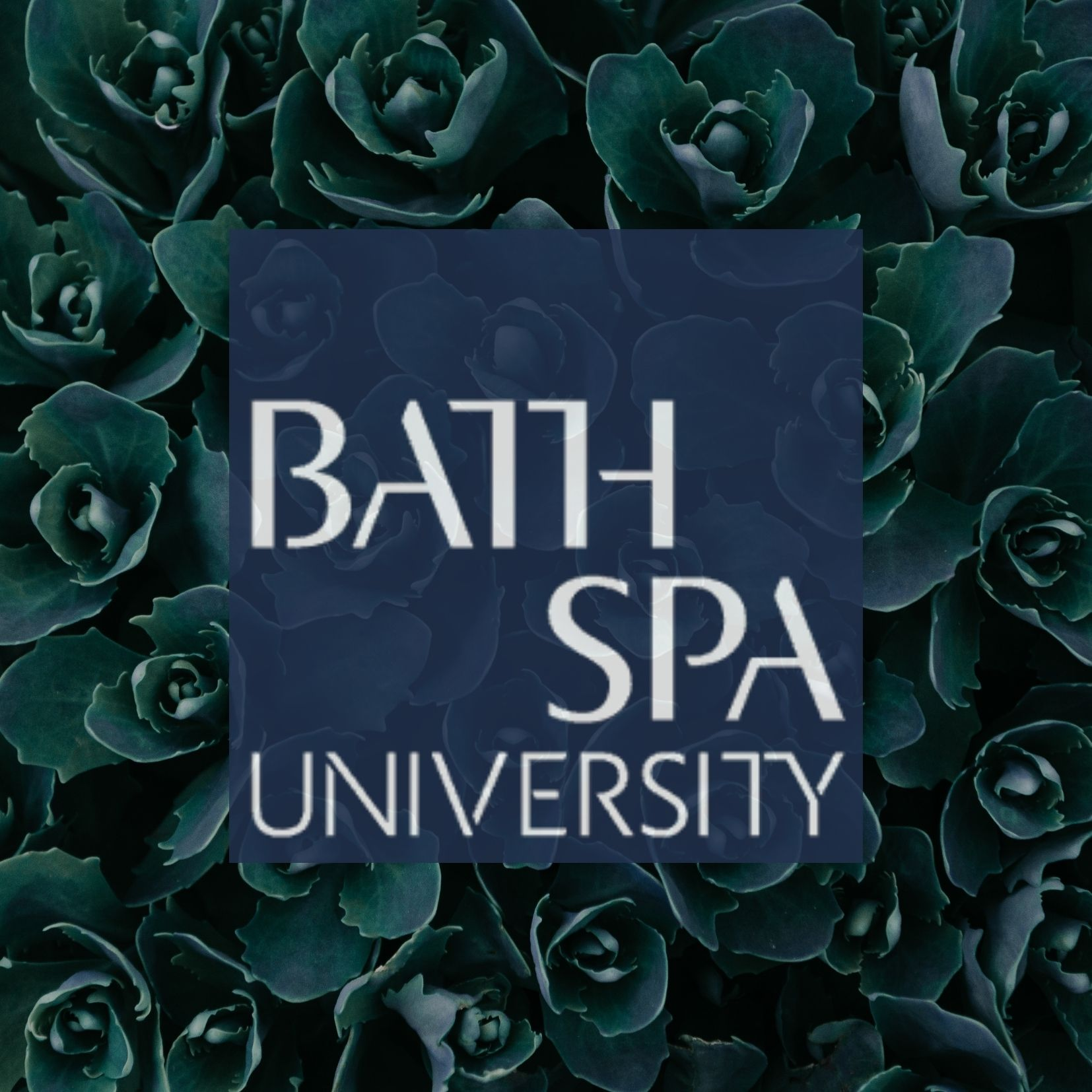 Research Center for Environmental Humanities Bath Spa